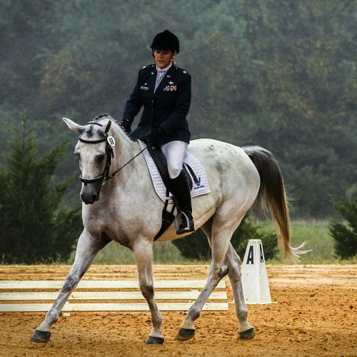 Equestrian Clothing - Arriving Soon
